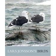 Lars Jonsson's Birds : Paintings from a Near Horizon by Jonsson, Lars, 9780691141510