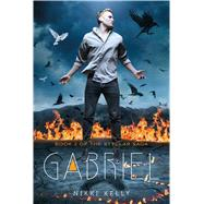 Gabriel at Biggerbooks.com