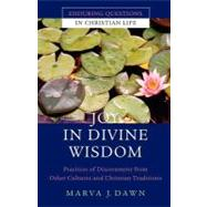 Joy in Divine Wisdom : Practices of Discernment from Other Cultures and Christian Traditions by Marva J. Dawn, 9780470491584