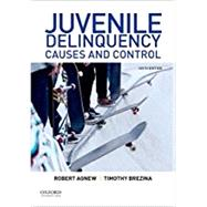 Juvenile Delinquency Causes and Control by Agnew, Robert; Brezina, Timothy, 9780190641610