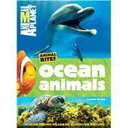Ocean Animals by Brown, Laaren, 9781618931627