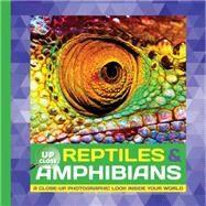 Reptiles & Amphibians by Fiedler, Heidi, 9781633221666