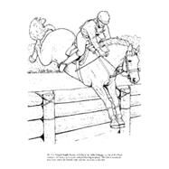 Big Book of Horses to Color by Green, John, 9780486451787