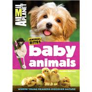 Animal Planet Baby Animals by Deprisco, Dorothea, 9781618931788