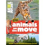 Animals on the Move by Deprisco, Dorothea, 9781618931795