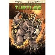 Teenage Mutant Ninja Turtles: Turtles in Time by Allor, Paul; Burnham, Erik; Campbell, Ross, 9781631401817