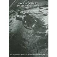 Excavations At Dryslwyn Castle 1980-1995 by Caple; Chris, 9781905981885