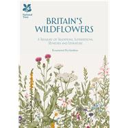 Britain's Wildflowers by Richardson, Rosamond, 9781909881921