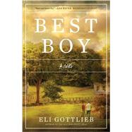 Best Boy by Gottlieb, Eli, 9781631491924