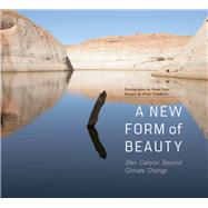 A New Form of Beauty by Goin, Peter; Friederici, Peter, 9780816531929