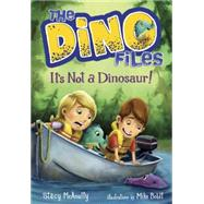 The Dino Files #3: It's Not a Dinosaur! by MCANULTY, STACYBOLDT, MIKE, 9780553521979