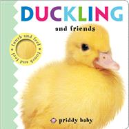 Duckling and Friends Touch and Feel by Priddy, Roger, 9780312522018