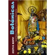 Bot nicas: Sacred Spaces of Healing and Devotion in Urban America by Murphy, Joseph M., 9781628462074