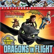 DreamWorks: Defenders of Berk: Dragons in Flight Stretchbook by DreamWorks Defenders of Berk, 9780794432133