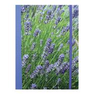 Lavender Blue Notebook by Cico Books, 9781782492153