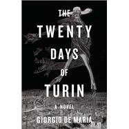 The Twenty Days of Turin by De Maria, Giorgio; Glazov, Ramon, 9781631492297