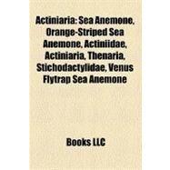 Actiniari : Sea Anemone by , 9781156382363