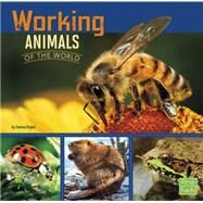 Working Animals of the World by Gagne, Tammy, 9781491422380