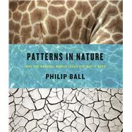 Patterns in Nature by Ball, Philip, 9780226332420