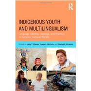 Indigenous Youth and Multilingualism: Language Identity, Ideology, and Practice in Dynamic Cultural Worlds by Wyman; Leisy T., 9780415522427
