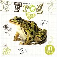 Life Cycle of a Frog by Jones, Grace; Mcmullen, Gemma, 9781910512463