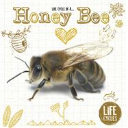 Life Cycle of a Honey Bee by Jones, Grace, 9781910512470