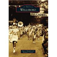 Wellsboro by Benjamin, Ann C.; Cooney, Michael J., 9781467122528