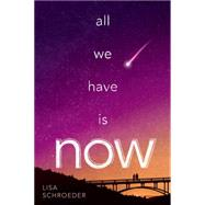 All We Have Is Now by Schroeder, Lisa, 9780545802536
