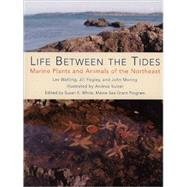 Life Between the Tides : Marine Plants and Animals of the Northeast