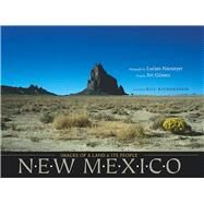 New Mexico by Niemeyer, Lucian; Art Gómez; Richardson, Bill, 9780826332585