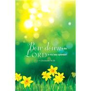 Daffodils Spring Bulletin-Regular 2016 by Abingdon Press, 9781501802676