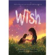 Wish by O'Connor, Barbara, 9780374302733