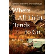 Where All Light Tends to Go by Joy, David, 9780399172779