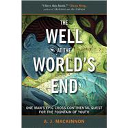 The Well at the World's End by Mackinnon, A. J., 9781634502825