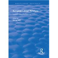 European Labour Relations: Volume I - Common Features by SzTll,Gy÷rgy, 9781138702912