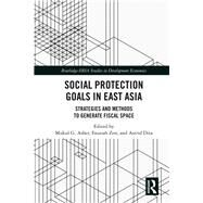 Social Protection Floor: Strategies and outcomes in East Asia by Asher; Mukul G., 9781138292963