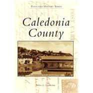 Caledonia County by Chamberlain, Dolores E., 9781467122993