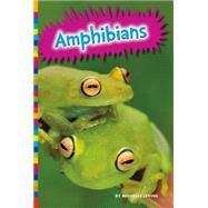 Amphibians by Levine, Michelle, 9781625883018