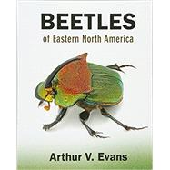 Beetles of Eastern North America by Evans, Arthur V., 9780691133041