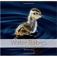 Water Babies by Burt, William, 9781581573053