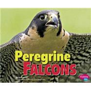 Peregrine Falcons by Hill, Melissa, 9781491423103