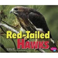 Red-tailed Hawks by Hill, Melissa, 9781491423110