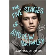 The Five Stages of Andrew Brawley by Hutchinson, Shaun David; Larsen, Christine, 9781481403115
