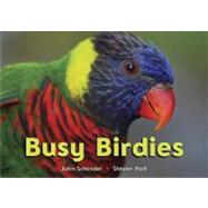 Busy Birdies by Schindel, John, 9781582463179