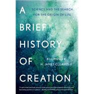 A Brief History of Creation by Mesler, Bill; Cleaves, H. James, 9780393353198
