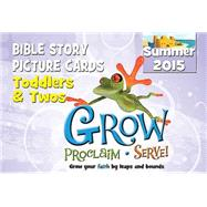 Grow, Proclaim, Serve! Toddlers & Twos Bible Story Picture Cards Summer 2015 by , 9781426783210
