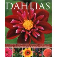 Dahlias by Collins, Ted; Buckley, Jonathan, 9781780193229