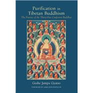 Purification in Tibetan Buddhism by Gyatso, Geshe Jampa; Nicell, Joan; Rinpoche, Lama Zopa, 9781614293262