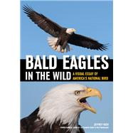 Bald Eagles in the Wild by Rich, Jeffrey, 9781682033289