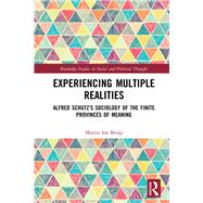Experiencing Multiple Realities: Alfred SchutzÆs sociology of the finite provinces of meaning by Benta; Marius Ion, 9780415793322
